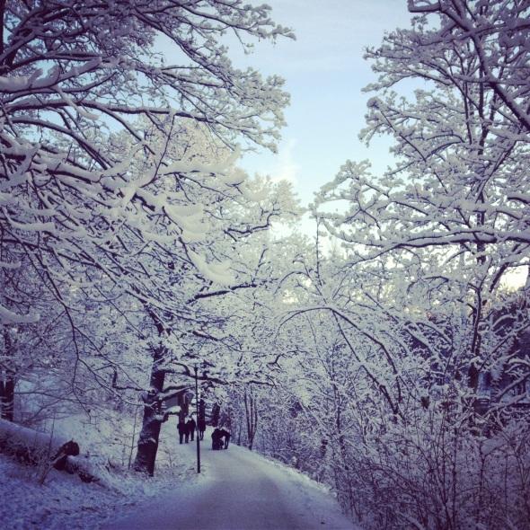 Djurgården snö vinter promenad