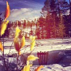 Bra med snö kvar