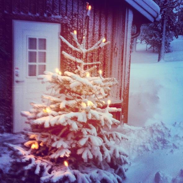 Julgran i Sälen