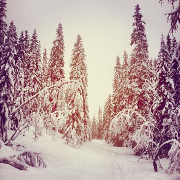 Sälen snö